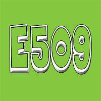 Aditivo E509 - cloruro de calcio
