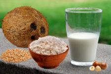 bebida vegetal de arroz, coco, espelta o avellanas
